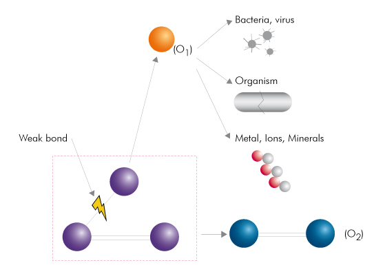 graphic showing how ozone works