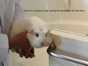 Why yes, Aquassure tests all its bathtubs by guinea pigs.